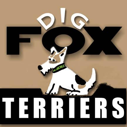 Fox_terriers_digthatdirt