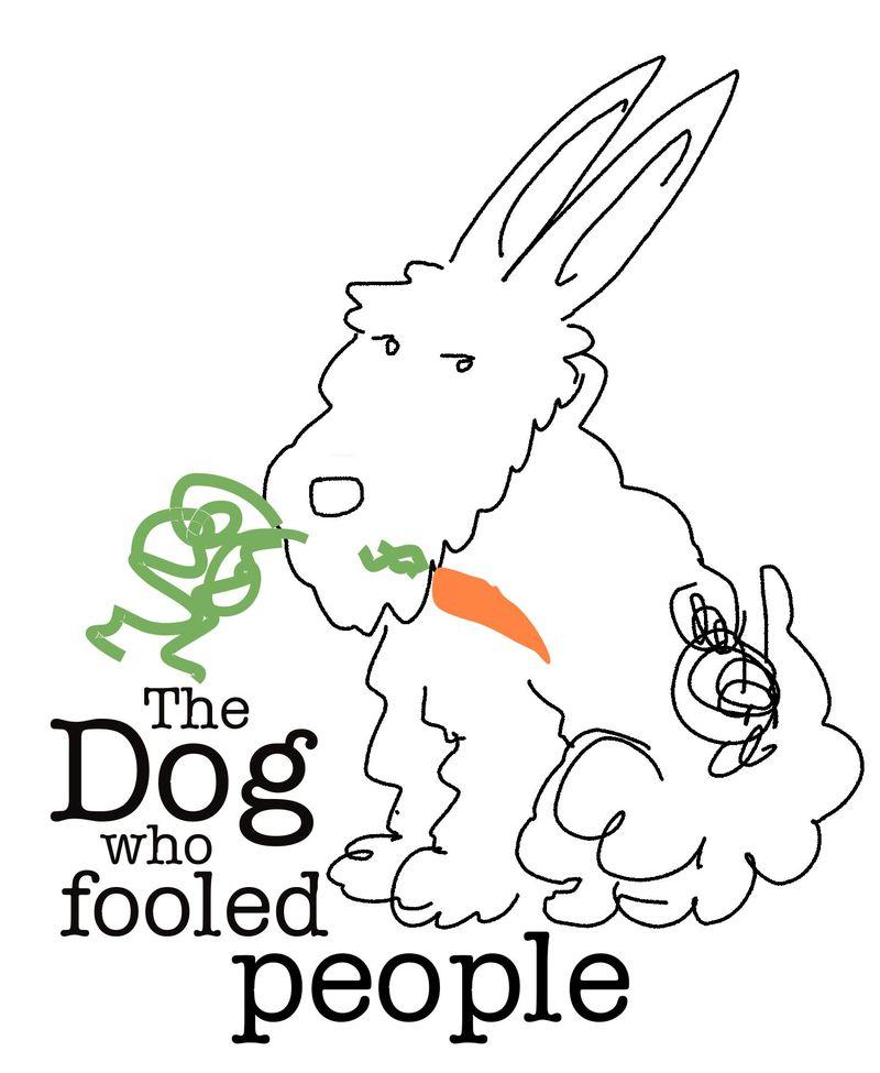 Mr Doodles Dog